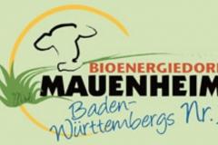 02_Bioenergiedorf Mauenheim (02)