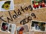 Waldtag 2009