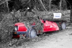 Waldtag2009 (01)