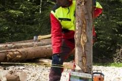 Waldtag2009 (33)
